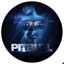Pitbull|pitbull 1