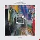 Turtle, Michal|turtle-michal 1