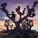 Koze, DJ|koze-dj 1