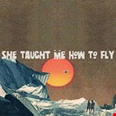 Gallaghers, Noel / High Flying Birds|gallaghers-noel-high-flying-birds 1