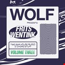 Frits Wentink|frits-wentink 1