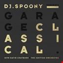 Spoony, DJ|spoony-dj 1