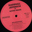Jefferson, Marshall / Noosa Heads|jefferson-marshall-noosa-heads 1