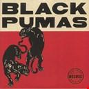 Black Pumas|black-pumas 1