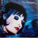Siouxsie And The Banshees|siouxsie-and-the-banshees 1